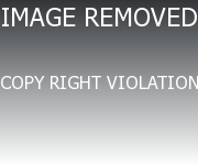 Converting Img Tag In The Page Url Pictures Tropical ...
