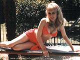 vintage nice legs : barbara eden