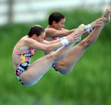 http://img121.imagevenue.com/loc460/th_43538_diving_world_champs_shanghai_2011_077_122_460lo.jpg